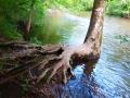 Ramapo River