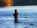 On water bonding…..