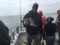 Humpback Porgy on Long Island SOund