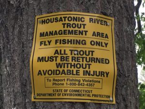 Fishing the Housatonic