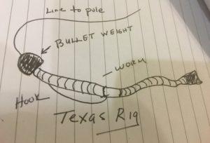 Texas Rig